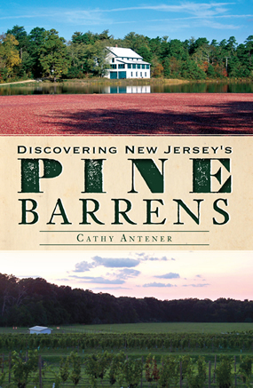 Discovering New Jersey's Pine Barrens