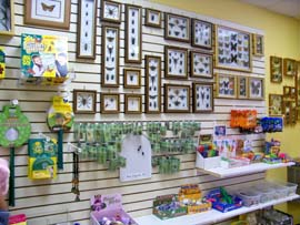 Gift shop at Insectropolis