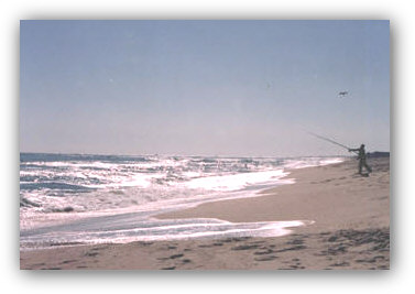 Surf fishing is a popular sport at Island Beach State Park, on th Atlantic Ocean